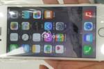 SMARTPHONE TERBARU : Apple Banting Harga Iphone 5s, Iphone 6, dan Iphone 6 Plus, Mau?