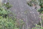 FOTO SERTIFIKASI : Pemberian Materi Vertical Rescue