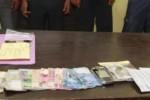 Main Kartu Domino, Dua PNS di Gunungkidul Ditangkap Polisi