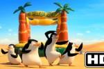 AGENDA SOLORAYA HARI INI : Klangenan Senin (1/12/2014): Penguins of Madagascar Ramaikan Bioskop Solo