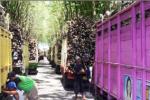 INDUSTRI GULA : PTPN X Rampungkan SNI 11 Pabrik Gula, Selanjutnya Layani Petani