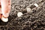 EKONOMI KREATIF : Bekraf Sediakan Akses Permodalan untuk Startup