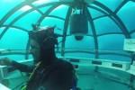 PENELITIAN BARU : Lahan Menipis, Penyelam Buat Kebun Bawah Laut