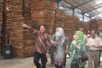 INDUSTRI WONOGIRI : Kabupaten Wonogiri Jadi Percontohan Barecore Kayu Indonesia