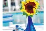 DESAIN INTERIOR : Tips Menata Bunga untuk Interior Rumah