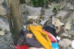 PENEMUAN MAYAT MADIUN : Mayat Wanita Setengah Telanjang Ditemukan di Hutan Saradan