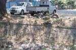 PENCEMARAN LINGKUNGAN : Mumpung Surut, Warga Usul Sungai Depan Kantor Perhutani Dibersihkan