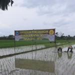 Akhir Tahun, Seluruh Desa di Trucuk Klaten Ditarget Miliki BUMDes