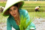 Setiap Tahun 1% Lahan Pertanian di Madiun Beralih Fungsi