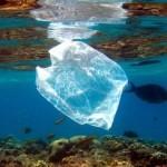 Kebiasaan Buruk Masyarakat yang Satu Ini Bikin Laut Tercemar