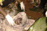 PEMBUANGAN BAYI : Tragis! Ibu Bunuh Bayi dan Membuangnya di Kakus