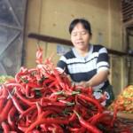 HARGA KEBUTUHAN POKOK : Harga Cabai Melejit, Kementerian Pertanian Segera Gelar OP