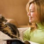 HASIL PENELITIAN : Peneliti Kaji Komunikasi Kucing dengan Pemilik