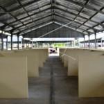KEBAKARAN PASAR JOHAR : Uang Keamanan Dikeluhkan Pedagang Korban Pasar Johar Terbakar