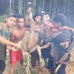 TRENDING SOSMED : Unggah Foto Bekantan di Facebook, Sejumlah Pemuda Jadi Buruan Polisi