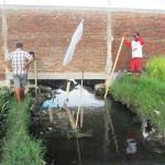 WARGA TENGGELAM SUKOHARJO : Kubangan Maut Dekat Perumahan di Singopuran Kartasura Disorot