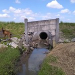 TOL SOLO-KERTOSONO : Petani di Sawahan Boyolali Membongkar Tembok Tol, Ini Alasannya
