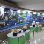 WISATA WONOGIRI : Belajar Geologi sambil Berwisata Edukasi di Museum Karst Praci