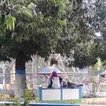 Bermesraan di Alun-Alun Kota Madiun, Sepasang Remaja Ini Dikecam