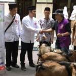 IDULADHA 2016 : Honda Bagikan 254 Kambing Kurban di Jateng