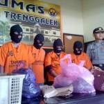 PENCURIAN TRENGGALEK : Komplotan Pencuri Dibekuk Setelah Gondol Uang Ratusan Juta