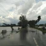PERTANIAN KLATEN : Sawah Kebanjiran, 381 Petani Terima Klaim Asuransi