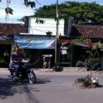 INFRASTRUKTUR SUKOHARJO : Warga Gatak Tanam Pohon Talok di Jalan Berlubang
