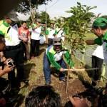 30.000 Pohon Ditanam di Dolopo Madiun, Ini Tujuannya