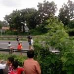 DEMAM TELOLET : Bocah-Bocah Semarang Berburu Telolet hingga Terobos Jalan Tol