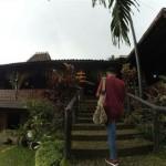 WISATA KENDAL : Desa di Kendal Ini Cocok Buat Ngadem