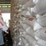 Kuota Pupuk Bersubsidi Berkurang, Petani Sragen Siap Turun ke Jalan