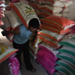 Panen Raya, Harga Beras di Pasar Legi Solo Mulai Rp7.000/kg