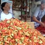 KOMODITAS PANGAN : Harga Cabai Rawit Merah di Solo Masih di Atas Rp100.000/Kg