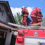 Sejumlah petugas pemadam kebakaran Klaten memusnahkan sarang tawon ndas atau tawon gung di Pedan, Klaten, Rabu (29/3/2017). (Ponco Suseno/JIBI/Solopos)