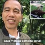 Vlog Terbaru Jokowi Bahas Kelahiran Kambing Peliharannya