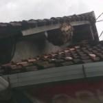 Sarang tawong gung berada di atas rumah (Facebook/Jefri Jeff)