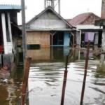 ROB DEMAK : Genangan Air Laut di Pesisir Demak Capai 1 M