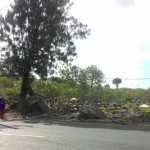 PENATAAN PKL SOLO : Lapak Dibongkar, Pedagang Kijing TPU Bonoloyo Bingung Cari Lokasi Jualan