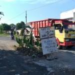 INFRASTRUKTUR KLATEN: Jalan Rusak, Warga Tanam Pohon Pisang