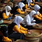 Foto Siswa Mengenal Nusantara 2017 ke Jambu
