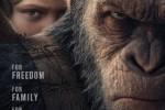 FILM BARU HOLLYWOOD : Fresh Buat Usir Stres