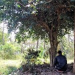 Diburu Pencari Harta Karun, Bukit Ngenyo di Boyolali Utara Mulai Diperhatikan