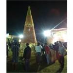 KISAH UNIK : Gunungan Undur-Undur LautTertinggi ada di Cilacap