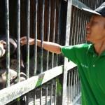 WISATA MADIUN : Ada Singa dan Kukang, Taman Umbul Madiun Miliki 100 Satwa