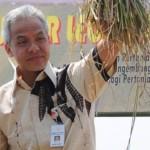 PERTANIAN JATENG : Gubernur Rekomendasikan Pola Jarwo Super