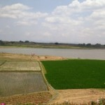KEKERINGAN KARANGANYAR : Air Surut, Begini Kondisi Waduk Lalung