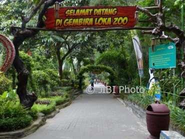 Bawa Anak Kecil, Pengunjung Gembira Loka Zoo Jogja Balik Kanan