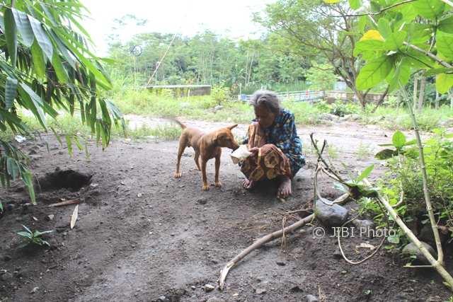 Kisah Sugiyem, Nenek-Nenek Asal Klaten Hidup Bersama Ayam & Anjing