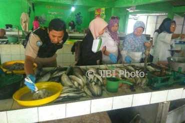 Pengawasan mutu dan keamanan hasil perikanan di Kulonprogo pada Rabu (28/3/2018). (Foto istimewa)