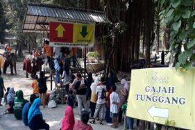 Anak Dilarang ke Tempat Wisata, TSTJ Solo Belum Berencana Buka